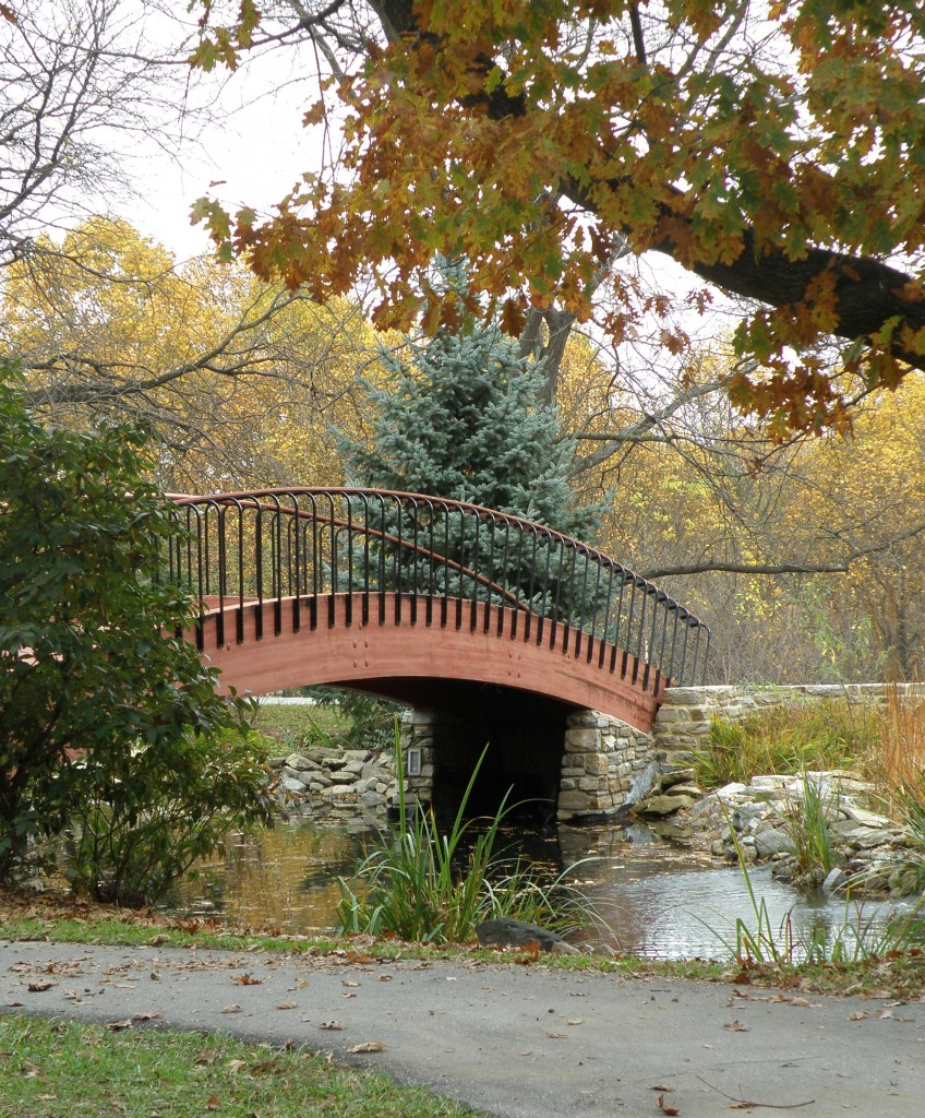 fall, autumn, bridge