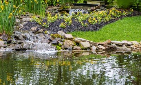 At the Water's Edge: The Sacred Space of Transition