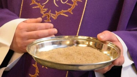 Fr. Michael Schleupner, ashes